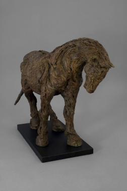 Iron Age - detail